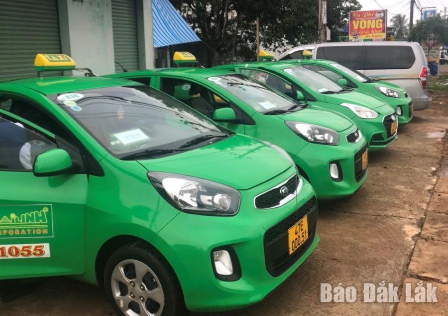 Nhiều xe của Chi nhánh Công ty cổ phần Tập đoàn Mai Linh tại Đắk Lắk nằm bãi cả ngày vì ế khách.