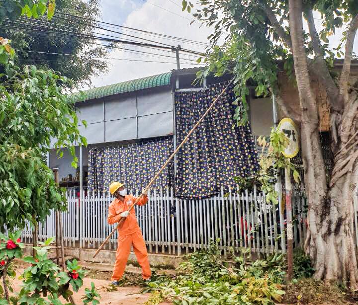 Điện lực Cư M'gar phát quang hành lang tuyến, ngăn ngừa sự cố trong mùa mưa bão