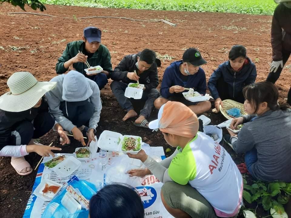 Bữa cơm vội vàng của những tình nguyện viên tại vườn rau. Ảnh: C.Nhung